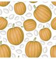 pumpkin seed pattern vector image