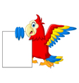Macaw bird with blank cartoon sign for you design vector image
