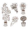 Decorative flowers collection vector image