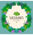 Succulents wreath vector image vector image