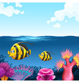 Two fish swimming under the sea vector image