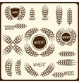 Design elements with wheat Agricultural image vector image vector image