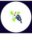 grapes computer symbol vector image