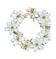 round frame of white lily flowers decoration vector image vector image