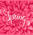 spring hand drawn calligraphy and brush pen vector image