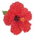 Hibiscus dotted flower vector image