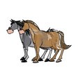 horse animal farm domestic strong image vector image