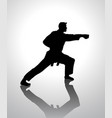 martial artist silhouette vector image
