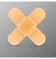Adhesive bandage vector image vector image