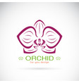 orchid logo on a white background flower vector image