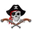 Pirate Skull and guns vector image