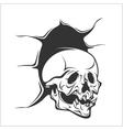 Demon Skull vector image