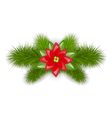 Christmas composition with fir twigs and flower vector image