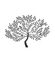decorative tree with birds on branches silhouette vector image