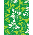 Parsley background on green vector image