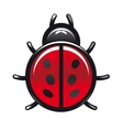 Red and black spotted cartoon ladybug vector image