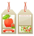 Sale tag of seedlings apple trees Instructions vector image