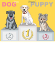 smiling puppy dog champion on the podium vector image vector image