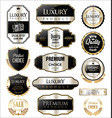 premium and luxury silver retro badges and labels vector image