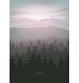 mountain forest in fog and sunrise vector image