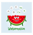 watermelon fruit vitamins and minerals funny vector image
