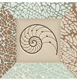 Nautilus shell background vector image