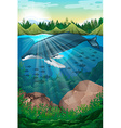 Nature scene with whale under the sea vector image