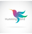 hummingbird design on a white background vector image
