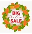 Autumn leaves wreath sale banner vector image