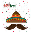 Viva mexico tradition hat mustache with confetti vector image
