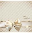 Holiday ribbon background vector image