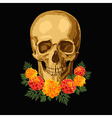skull with marigolds vector image