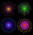 Colorful Fireworks on Dark Background vector image