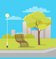 isolated wood bench near lantern and tree in park vector image
