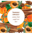 summer appricot and cinnamon background pattern vector image