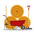 red flat gardening wheelbarrow with hay rake and vector image