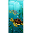 Two turtles swimming under the sea vector image