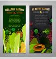 vitamin b9 posters vector image