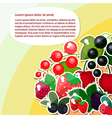 berry text vector image