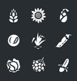 set of harvest icons vector image