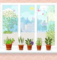 herbs in flower pots growing on a windowsill the vector image