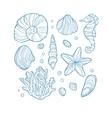 Set seashell coral seahorse starfish and rocks vector image
