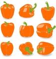 Pepper set of orange peppers vector image