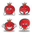 pomegranate cartoon character style set vector image