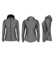 Softshell hooded jacket for lady vector image
