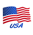 American flag in wind with USA vector image