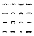 Different types of mustaches vector image