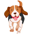 Cute dog running on white background vector image
