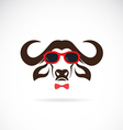 images of buffalo wearing sunglasses vector image vector image