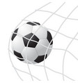 realistic detailed 3d soccer ball hitting on net vector image